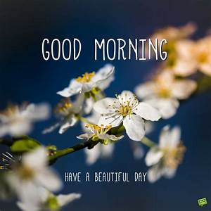 Have a Beautifu... Beautiful Morning Wish Quotes