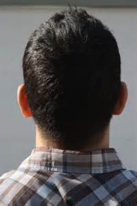 Back of People's Heads