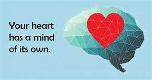 Modern Research Reveals Your Heart Does Have A Mind Of Its