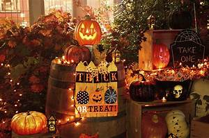 Choosing, A, Theme, For, Halloween, Decorations