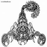 Scorpion Tattoo Doodles Scorpio Adult Colouring Drawings Tattoos Welshpixie Coloring Mandala Scorpions Drawing Deviantart Geometric Little Traditional Deviant Doodle Abstract sketch template