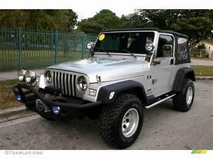 2003 Jeep Wrangler X 4x4 Custom Horns Photo #59618534 ...