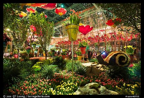 picture photo botanical garden bellagio hotel las vegas