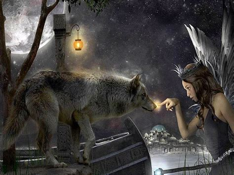 wallpapers wolf  fairy wolf wallpaperspro