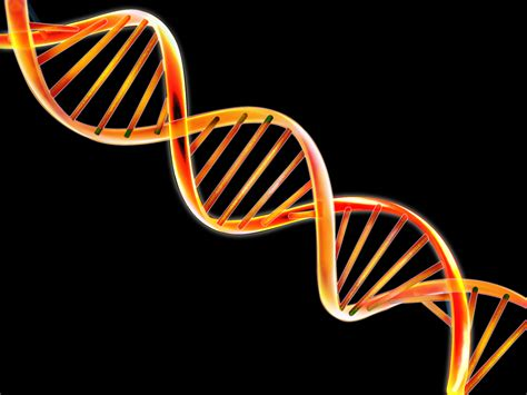 Image result for images dna double helix