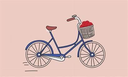 Bicycle Shkodra Pi Bailey Faith