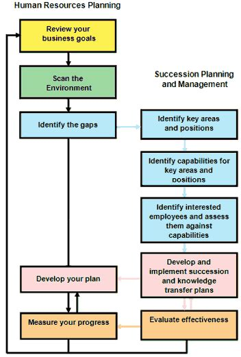 Human Resources Planning Guide For Executives