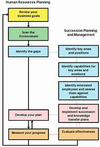 Human resources planning guide for executives for Employee succession planning template