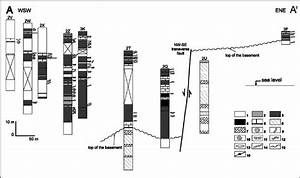 Stratigraphic Section Of The Cores Along A U2013a 0  See Fig  2