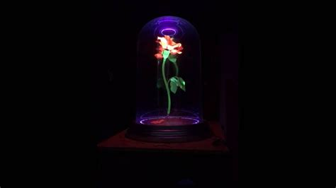 Beauty And The Beast Enchanted Rose Prop