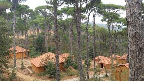 view of the hotel picture of la maison de la foret jezzine tripadvisor