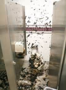 diarrhea toilet www pixshark com images galleries with