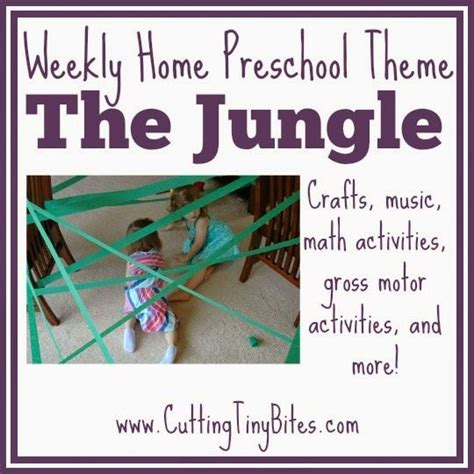 best 25 jungle preschool themes ideas on 360 | e8f0419eeb98acc4067413bb222c7cb9 preschool jungle preschool math