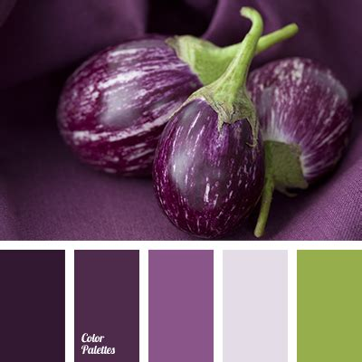 color of eggplant color palette ideas