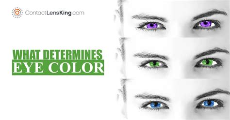 how to determine eye color what determines eye color is it genetics
