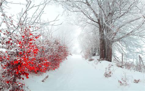 Pretty Iphone 6 Wallpaper Beautiful Christmas Desktop Wallpapers Wallpapersafari
