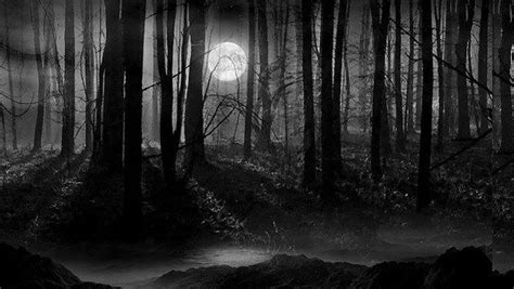 image result  creepy woods addams backgrounds