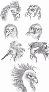 Phoenix Bird Sketches by RA-Meenan on DeviantArt