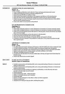 Coordinator Resume Examples Air Coordinator Resume Samples Velvet Jobs