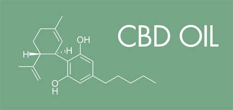 10 Must Know Facts About Cbd Oil