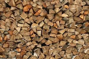Bois De Chauffage Gratuit : tlcharger fond d 39 ecran bois de chauffage arbre bouleau ~ Melissatoandfro.com Idées de Décoration