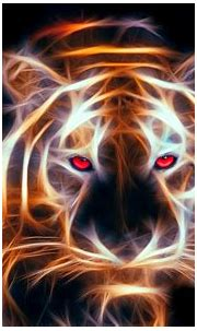 Tiger HD Wallpaper   Background Image   1920x1200   ID ...