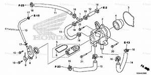 26 Honda Ruckus Parts Diagram