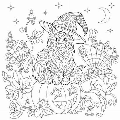 Halloween Pumpkin Coloring Pages Cat Adults Vector