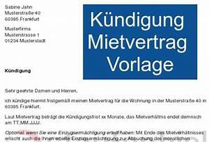 Kündigungsschreiben Wohnung Mieter : k ndigung mietvertrag vorlage download ~ Lizthompson.info Haus und Dekorationen