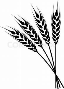 Silhouette ears of wheat icon. Crop symbol isolated on ...