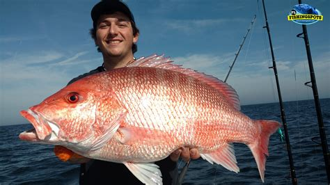 fishing offshore tampa spots snapper florida map gps gulf mexico bay maps bottom fl coordinates trolling areas