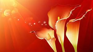 Abstract Red Elegant Flower Design Widescreen And HD