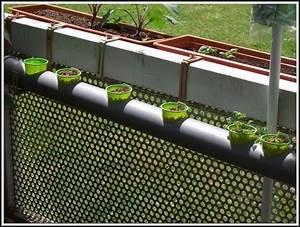 Erdbeeren Wann Pflanzen : erdbeeren pflanzen balkon anleitung balkon house und dekor galerie 7zglxqygvn ~ Frokenaadalensverden.com Haus und Dekorationen