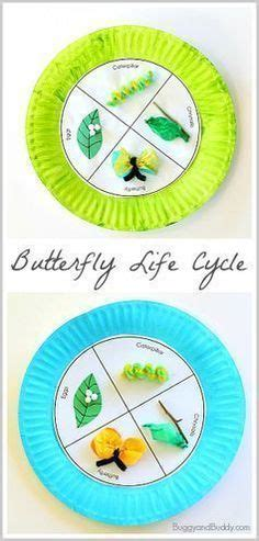 butterfly life cycle paper plate toy craft free fjextange template butterfly template for cut out butterfly stencil model
