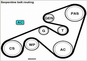 Renault Laguna Estate 1999   Alternator Belt Diagram