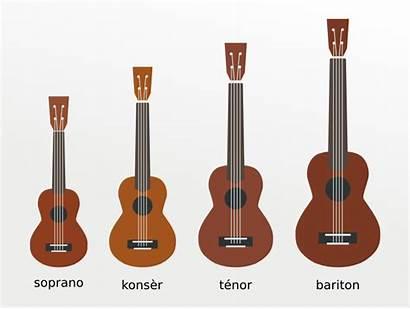 Ukulele Sizes Perfect Ukuleles Tenor Soprano Baritone