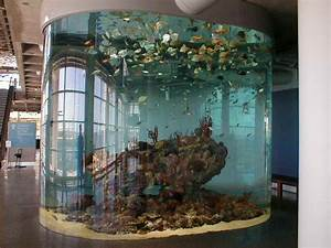 indoor architectural cool fish tank designs ideas how to With fish tank designs for home