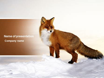 red fox  template  powerpoint  keynote