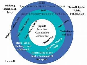 35 Body Soul Spirit Bible Diagram