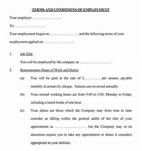 Statement of terms and conditions of employment template for Statement of terms and conditions of employment template