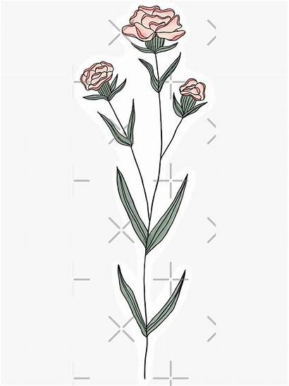 January Month Flower Birth Sticker Carnation Redbubble