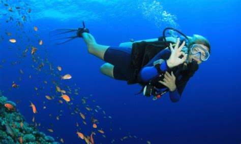 scuba diving safety tips  beginners hubpages