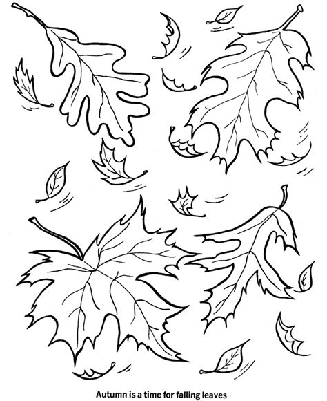 printable leaf coloring pages  kids