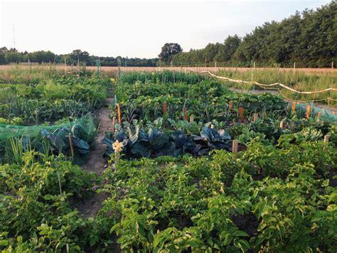 Meine Ernte Miete Deinen Garten In Stapelfeld Bei Hamburg