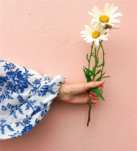 hashtag idea  instagram bloomingsleeves lazy
