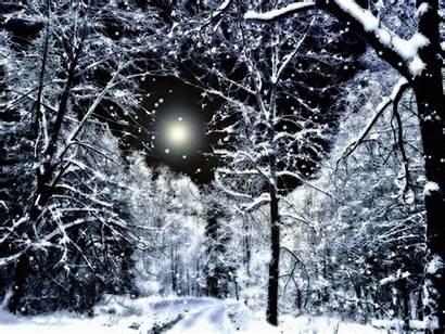 Night Snowy Winter Snow Animated Christmas Garden
