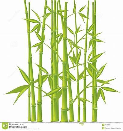 Bamboo Vector Mesh Illustration Royalty Dreamstime