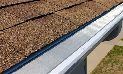 decorating with leaf guards leaf roof design screen 2011 02 11 at 17 30 05 png