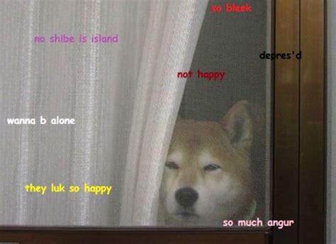 Shibe Meme Maker - doge meme comic sans image memes at relatably com