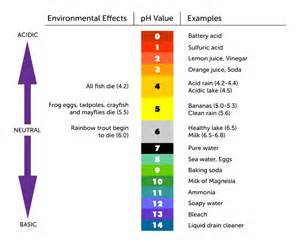 What Is an Acid and Base pH Scale